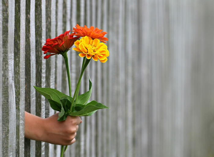 Cadeau_fleurs